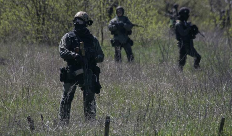 Батальон «Донбас» може стати дивізією