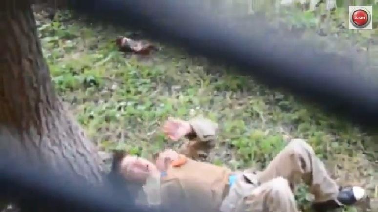 В результате спецоперации, по уничтожению «бандеровской горилки» был контужен боец «ДНР» (ВИДЕО)