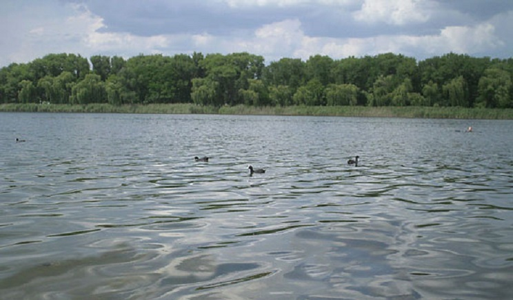 Славянские террористы воюют между собой, а трупы сбрасывают в местное озеро