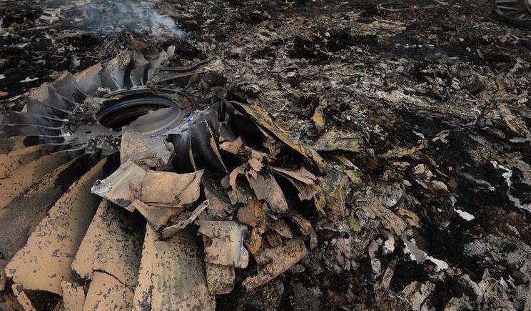 Российские спецслужбы уничтожили все доказательства на месте крушения Boeing 777