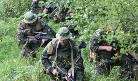 В Красном Луче высадился армейский спецназ Украины?