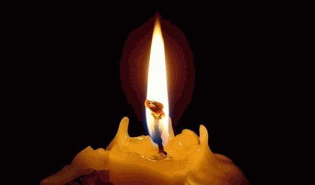 За время АТО погибло 568 украинских военных, – СНБО