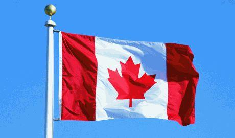 Канада приняла решение послать Украине военную помощь