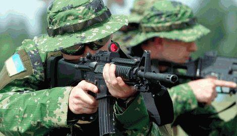 Реформувати армію в найкращій традиції «Запорізьких козаків»
