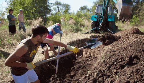 Лопата вместо автомата, правительство Украины ввело трудовую повинность в случае военного положения