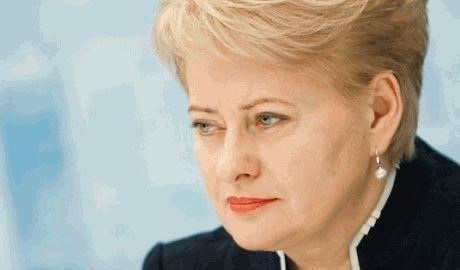 Россия превращается в международную террористическую организацию – президент Литвы