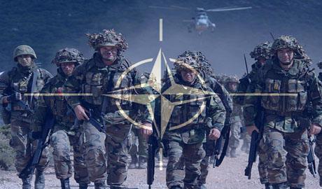 Военный офицер НАТО подтверждает информацию о вторжении российских войск в Украину