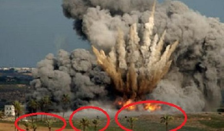 «Хунта бомбит Донбасс, аж кокосы сыпятся» — очередной идиотизм сторонников «Новороссии» ФОТО