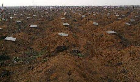 За три месяца в Ростове появились 500 свежих безымянных могил ФОТОфакт