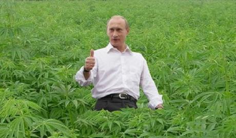 Путин никакой не разведчик, а обычный наркобарон