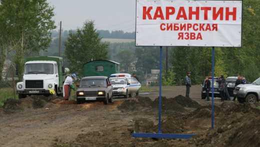 В России обнаружен очаг Сибирской язвы
