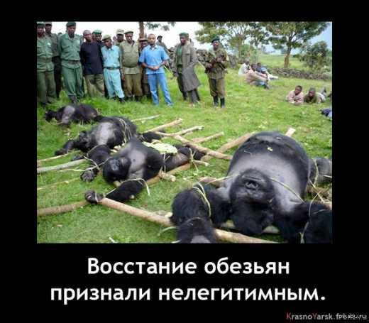 Уши майдана_3.0 растут с Лубянки при помощи кума Путина Медведчука