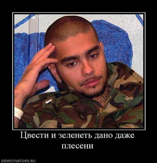 Саакашвили запретил концерт путинского холуя Тимати.