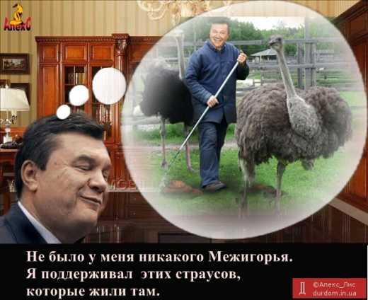 Когда ты рассказал о страусах и тебя услышали: Интерпол удалил страницу розыска Януковича