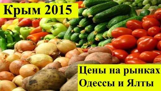 Сколько нужно зарабатывать, чтобы выжить? В Крыму уже перечисляют причины провала нынешнего сезона
