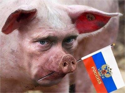 Новости Крымнаша. Выпуск #280 за 19.08.2015