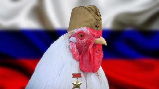 Большинство россиян не знают свой гимн и путают цвета флага РФ (опрос)