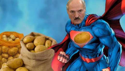 Беларусь будет защищать свои продукты от уничтожения их в РФ