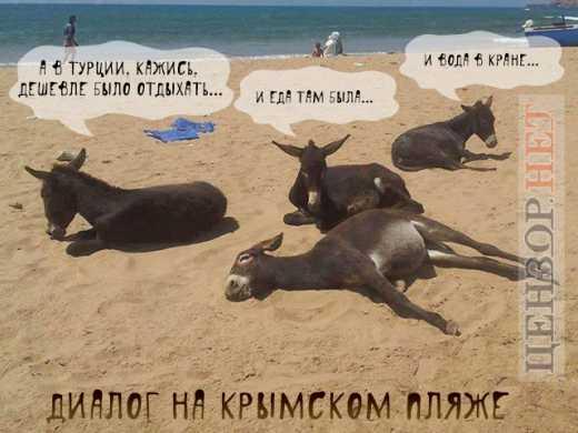 Новости Крымнаша. Выпуск #282 за 21.08.2015