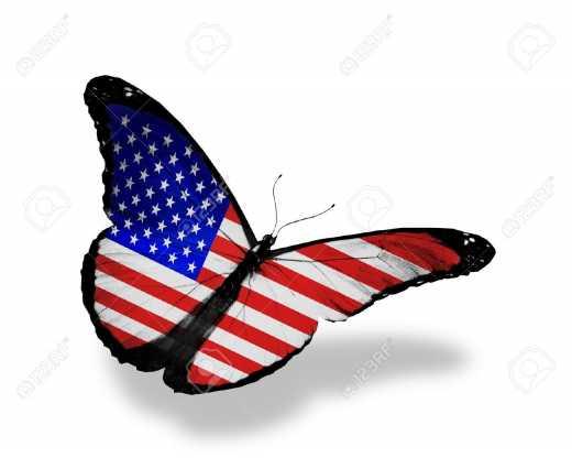 Американские бабочки атакуют Крым с территории воинских частей РФ, – оккупационная власть полуострова