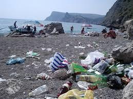 Севастополь утонул в мусоре. Жители города просят Путина спасти их от крыс