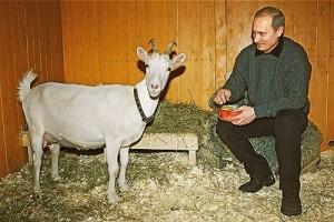 Как у Путина появилась коза