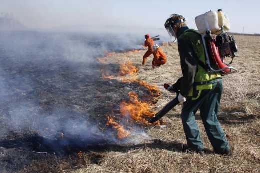 Полтава «задихається» через пожежу на торф'яниках