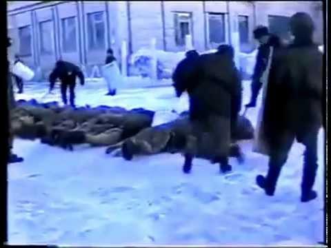 Современный российский концлагерь для отказавшихся воевать в Украине. Гитлер отдыхает