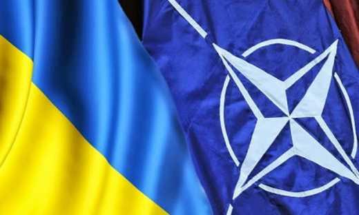 Поддержка вступления Украины в НАТО достигла рекордного уровня