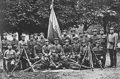 В інтернеті з'явилися скановані документи УГА 1918-1919 рр.