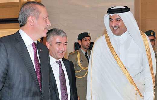 У Туреччині знайшли альтернативу російському газу