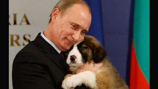 Путин готовит самоубийство, – Боровой