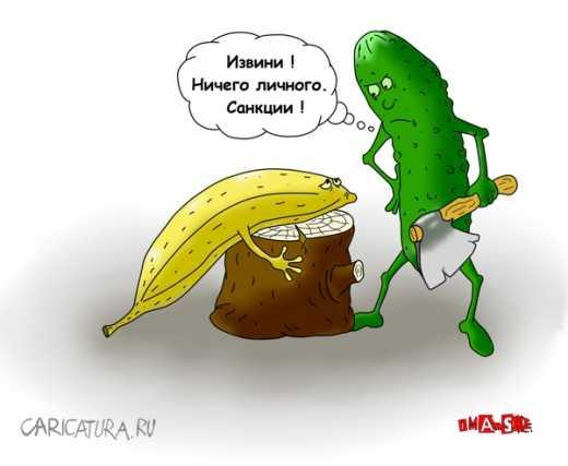 Киев обнародовал предварительный список санкционных продуктов из России