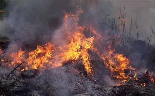 На Николаевском полигоне пожар: есть пострадавшие