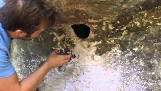 Отец вытащил из скалы кубло пауков, чтоб дети не боялись играться (ВИДЕО +18)