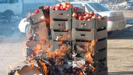 Россільгоспнагляд знищив 200 тон їжі з Туреччини, Марокко та Ізраїлю