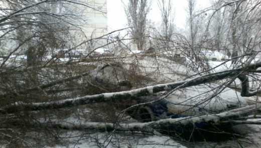 Через снігопад у Харкові відмінили навчання