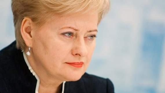 Президент Литви розповіла про безвізовий режим України з ЄС