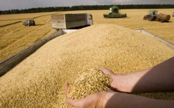 Експорт зерна з України побив всі попередні рекорди