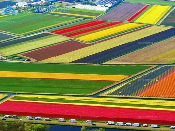 Нидерланды готовы ратифицировать соглашение об ассоциации Украины с ЕС
