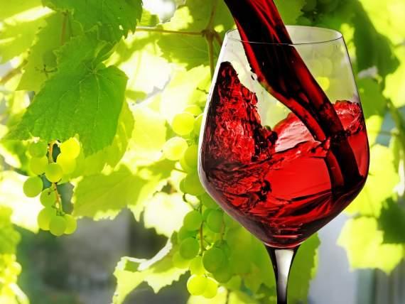 В Іспанії помер 107-річний винороб