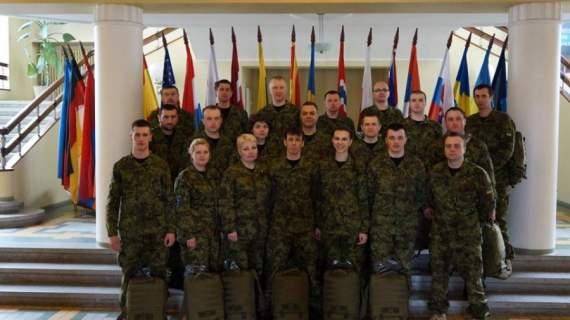 Не пафосная помощь Эстонии Украине (фото)