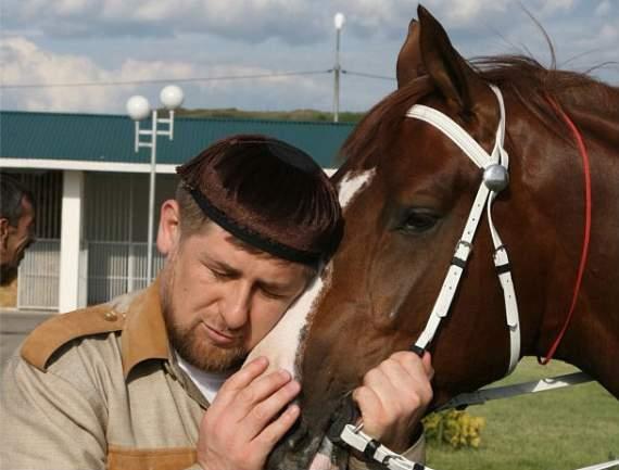 Кадыров велел вывести лошадь чеченской породы