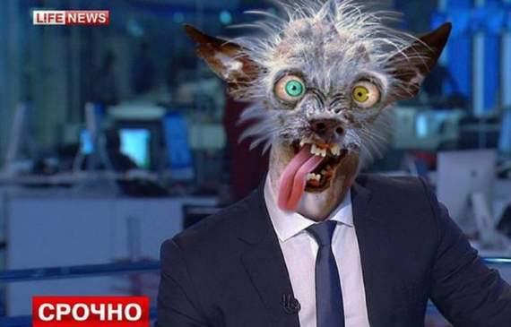 Азербайджан не стал церемонится с LifeNews… да, это вам не Украина