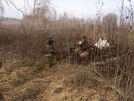 В России произошло очередное падение самолета
