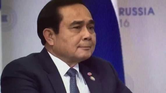 """Превед, Медвед"" Правительство Таиланда поблагодарило ""его превосходительство Медведа"" /Видео/"