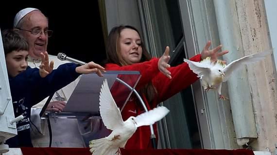 """Экстрасенс: """"Чайка, напавшая на голубя, – это Турция"""""""