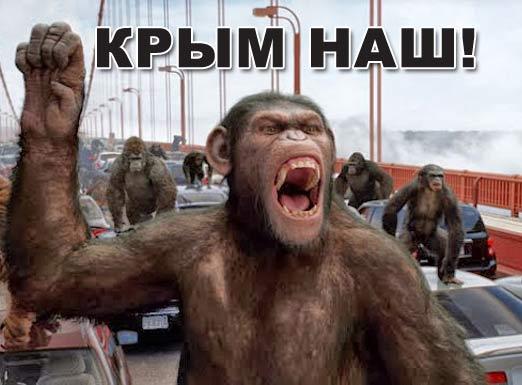 Новости Крымнаша. Выпуск #768