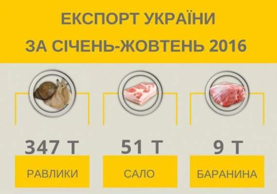 Украина экспортирует больше улиток, чем сала, – клуб аграрного бизнеса.