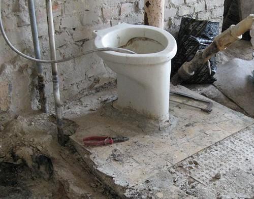 Росстат: в Республике Алтай только в 23% домов есть унитазы, по России — 67%
